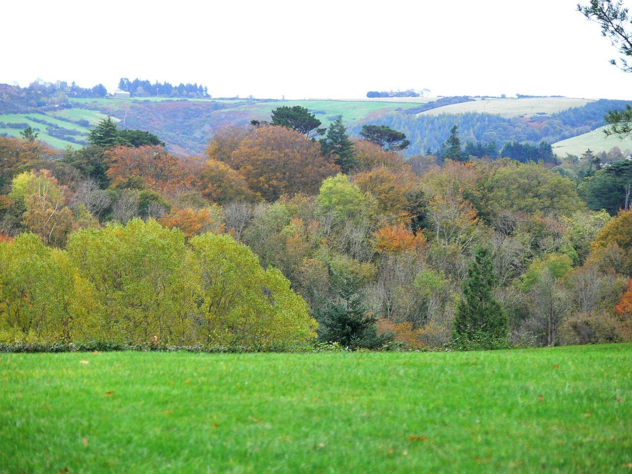 Forest Autumn Ireland Trees Colorful Forest Forest Autumn Ireland Trees Colorful Forest Images Of Ireland Natural Landmarks Dublin Ireland Autumn grass field mountain forest trees