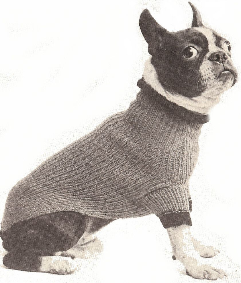 The best sweaters and coats to knit for your dog free patterns this vintage dog sweater pattern will fit most small and medium sized dogs knitted with knitting worsted in any color your dog loves best bankloansurffo Gallery