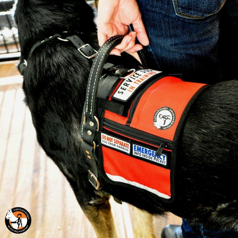 Service Dog Cape Vest Service Dogs Service Dog Training Dog Vest