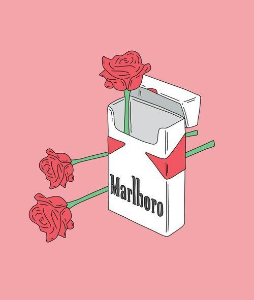 Rose Wallpaper Cigarette Marlboro Pink
