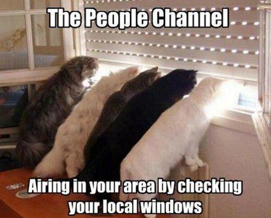 wonder who is always watching.