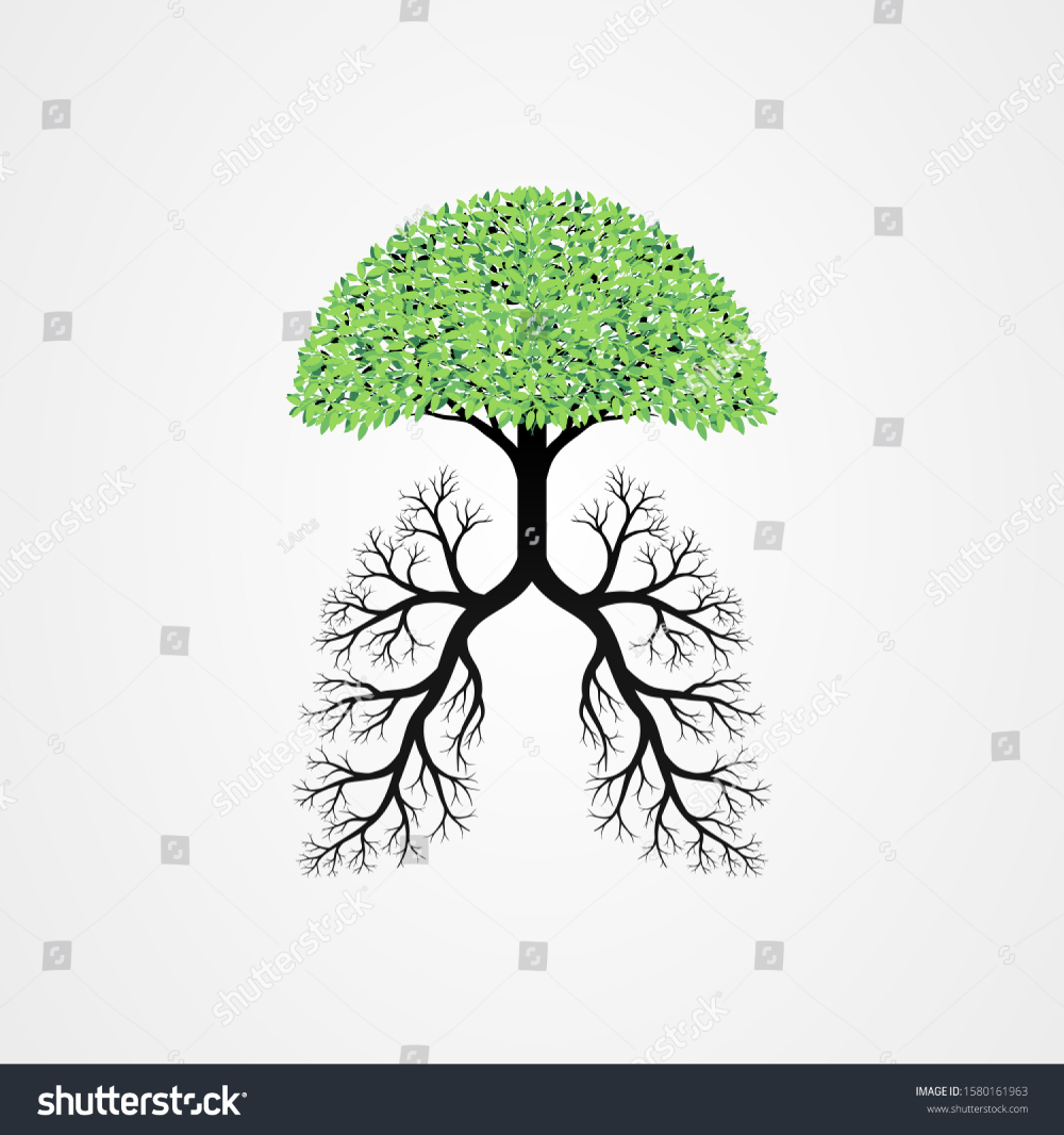 Tree Vector Illustration Roots Shaped Like Stock Vector Royalty Free 1580161963 Vector Illustration Illustration Stock Vector