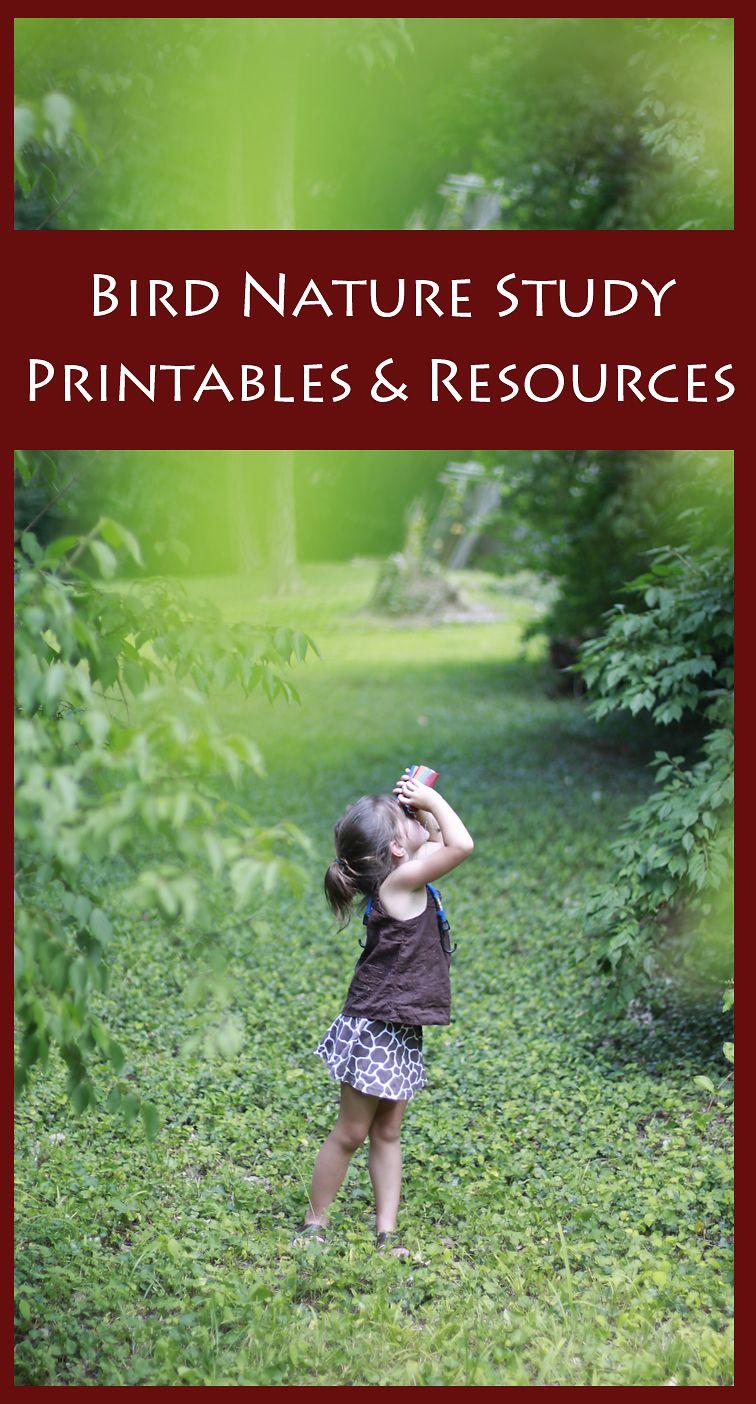 Bird nature study printables resources birdwatching