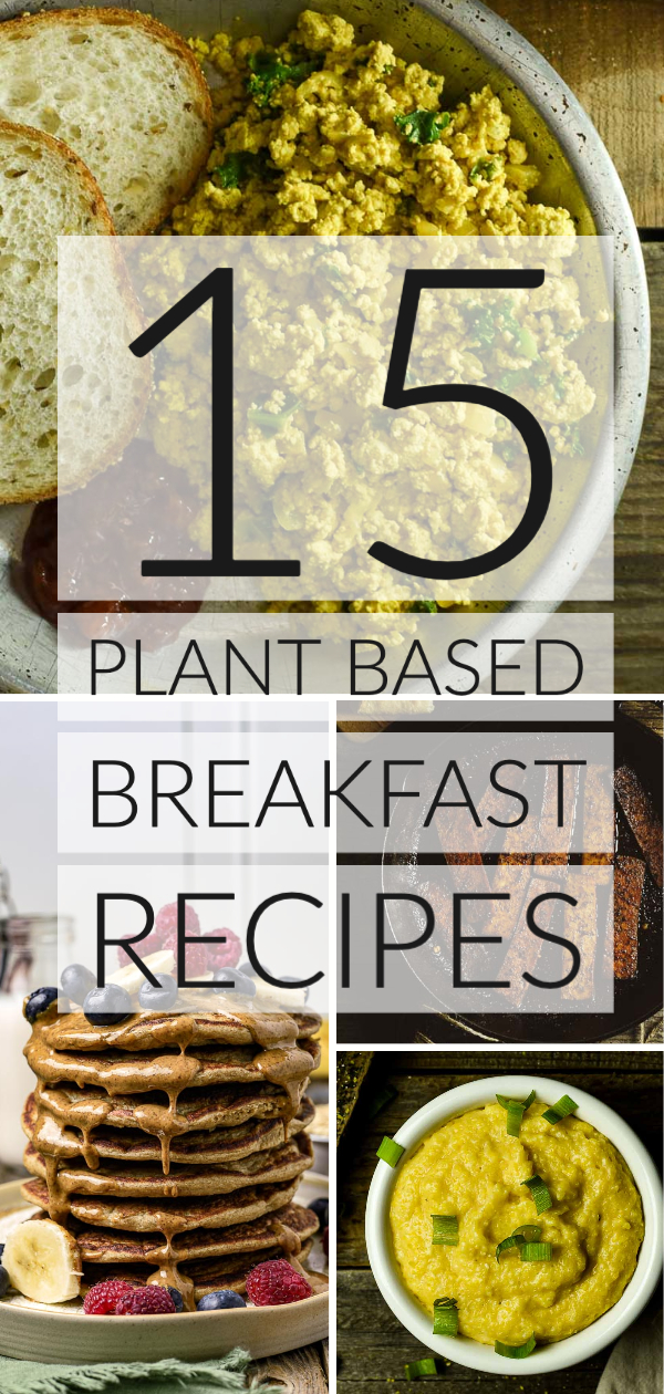 15 Easy Plant Based Breakfast Recipes That Healthy Oil Free And Delicious These In 2020 Plant Based Recipes Breakfast Plant Based Diet Recipes Plant Based Breakfast