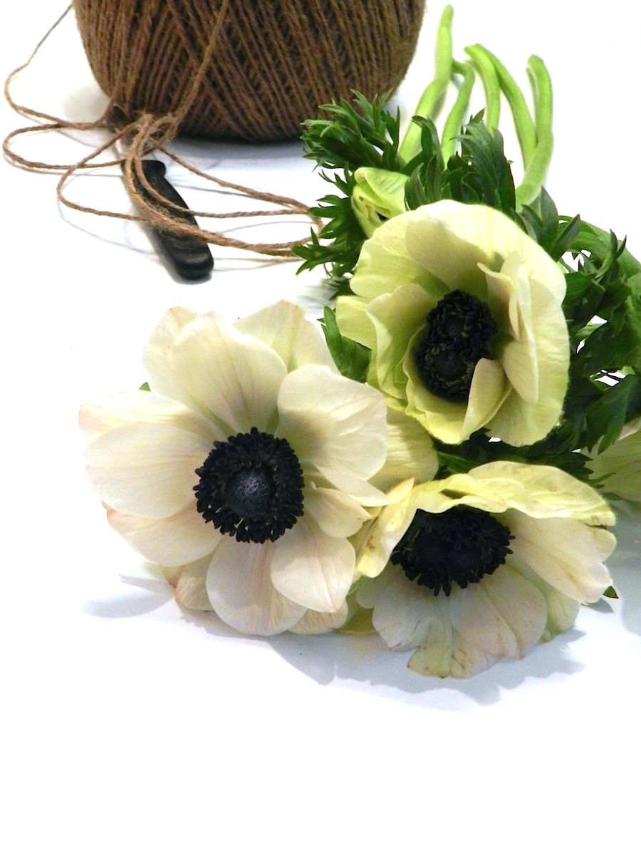 Lempikukat | Kukkakauppa Mehitähti