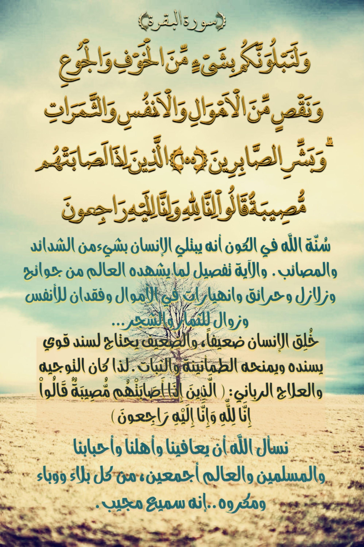 Pin By Youssef On بل غوا عن ي ول و آية In 2021 Quran Tafseer Quran Arabic Calligraphy