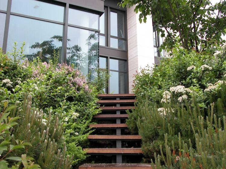 gartengestaltung-hanglage-treppe-modernes-haus-pflanzen-begruenung - bilder gartengestaltung hanglage