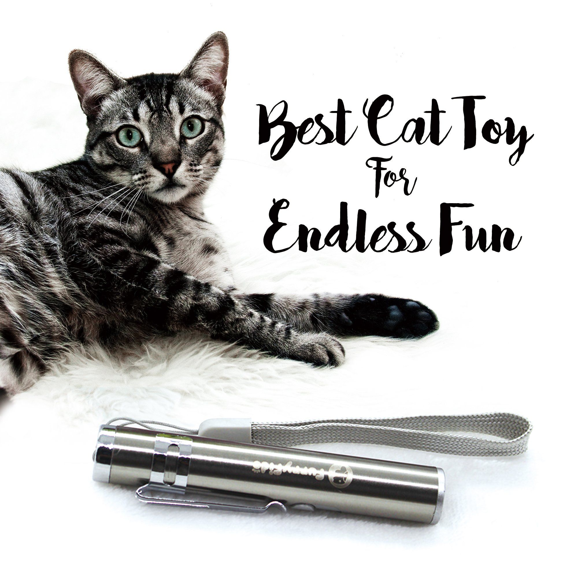 Chase Cat Toy For Endless Fun Interactive Led Light By Furryfido To Entertain Your Pets Usb Chargeable Read More Reviews Cat Toys Cats Cat Laser Pointer