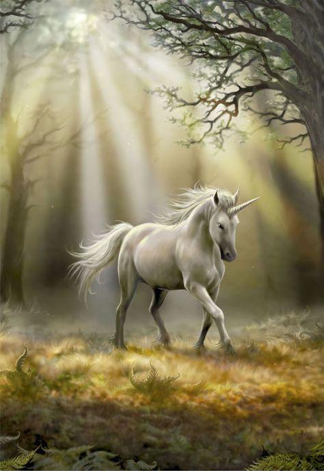 Seres Mitologicos Griegos Mitología Unicorno Pegaso Y Fiabe