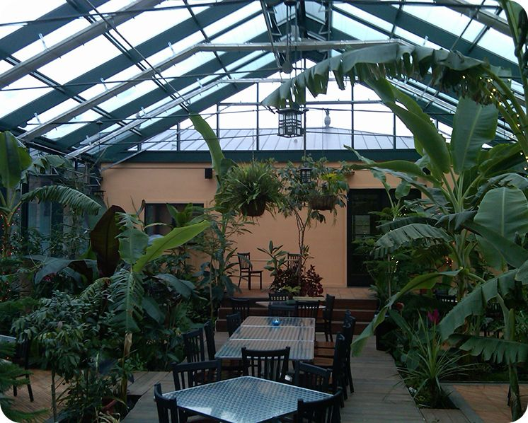 Winery Commercial Greenhouse Interior Greenhouses Pinterest