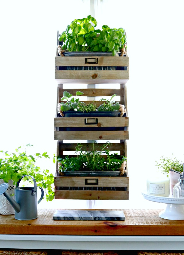 how to plant a kitchen herb garden in 2020 herb garden in kitchen kitchen herbs indoor herb on outdoor kitchen herb garden id=69800