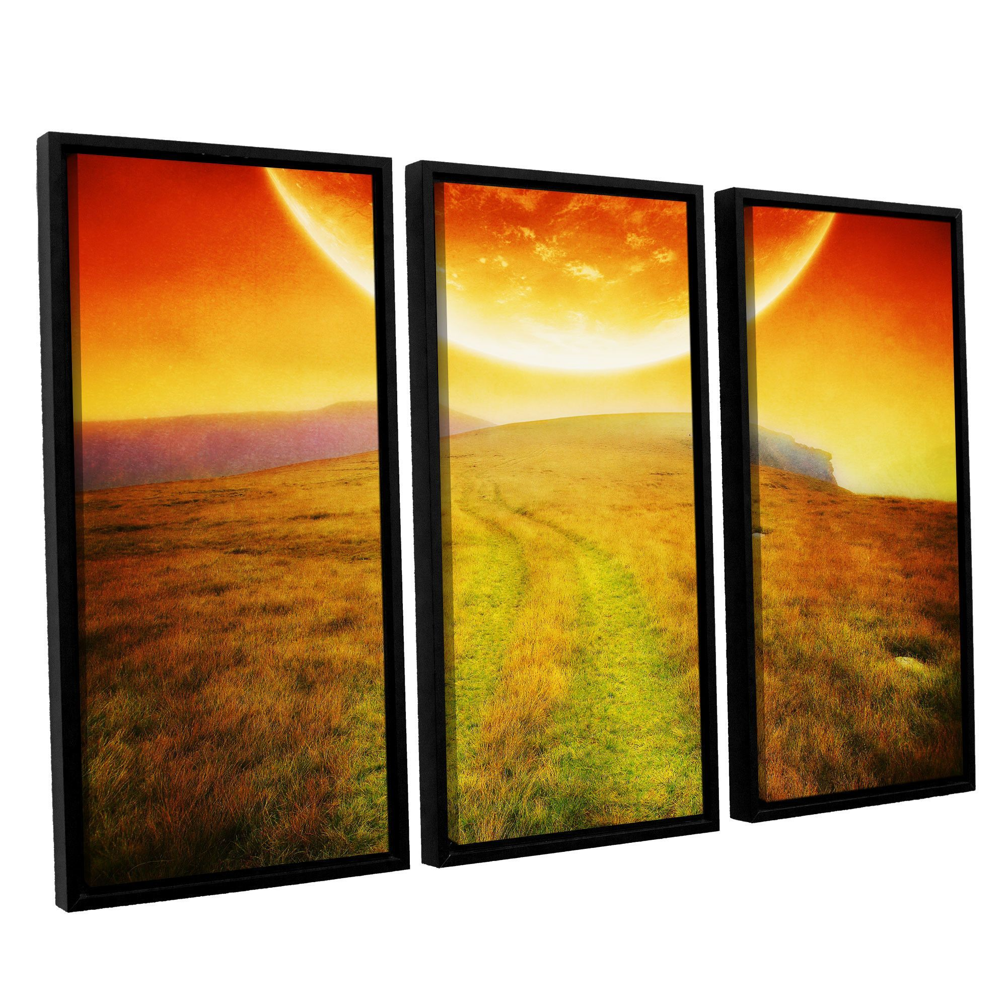 Apocolypse Now by Dragos Dumitrascu 3 Piece Floater Framed Wall Art ...