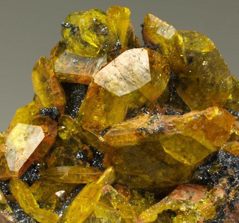 Sturmanite,  Ca6(Fe+++,Al,Mn++)2(SO4)2[B(OH)4](OH)12•25(H2O), N'Chwaning III Mine, Kalahari Manganese Fields, Kuruman, Northern Cape, South Africa