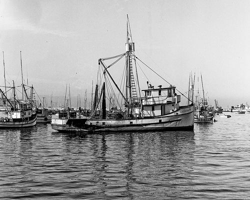 Old Commercial Fishing Boat Dsc02824 Fishing Boats Boat