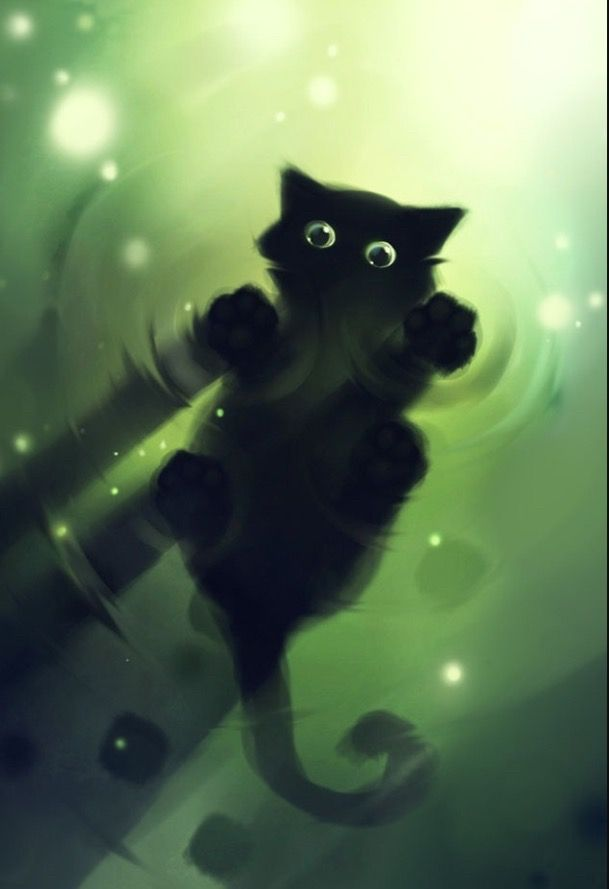 Pin By Melissa Hempel On Cats Cats Wallpaper Beautiful Cats