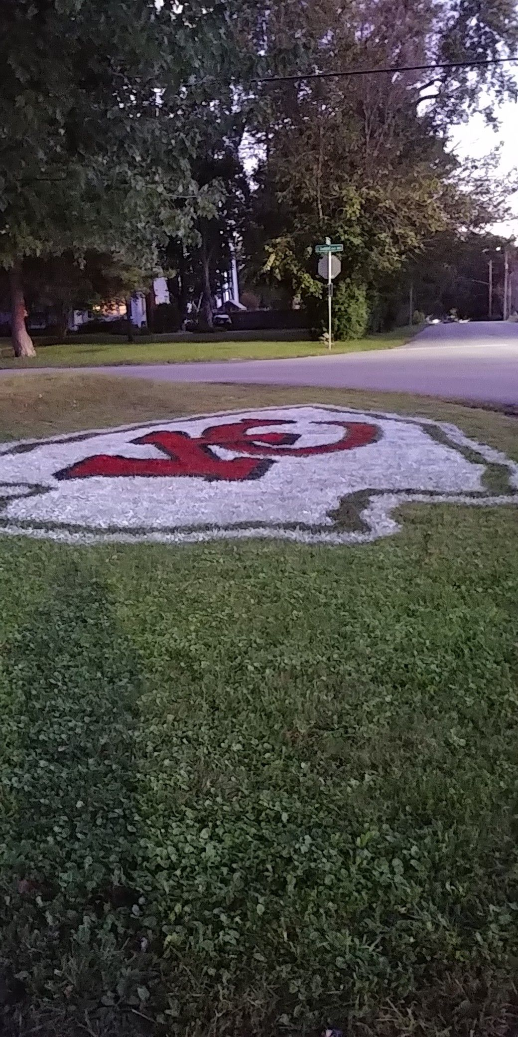 This Is The 4th Year For Painting The Logo In My Yard In 2020
