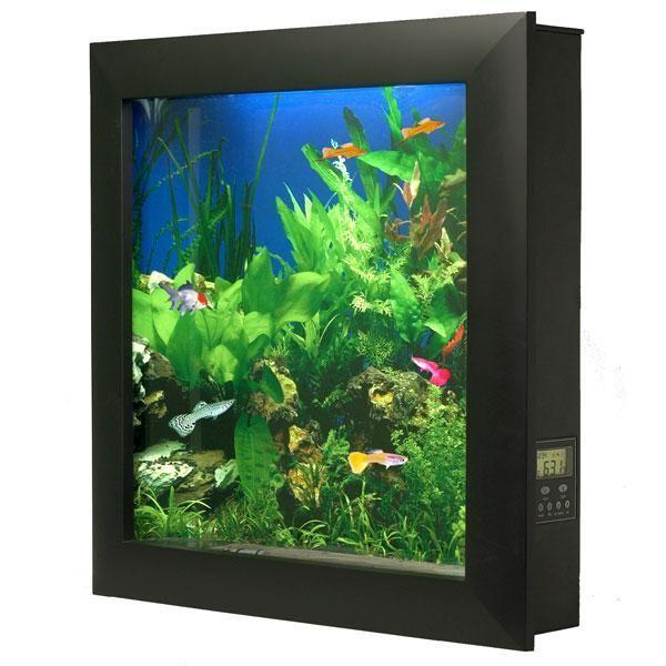 Amazon Com Aquavista 500 Wall Mounted Aquarium With Seaweed Background Black Frame Pet Supplies Wall Aquarium Aquarium Aquarium Fish