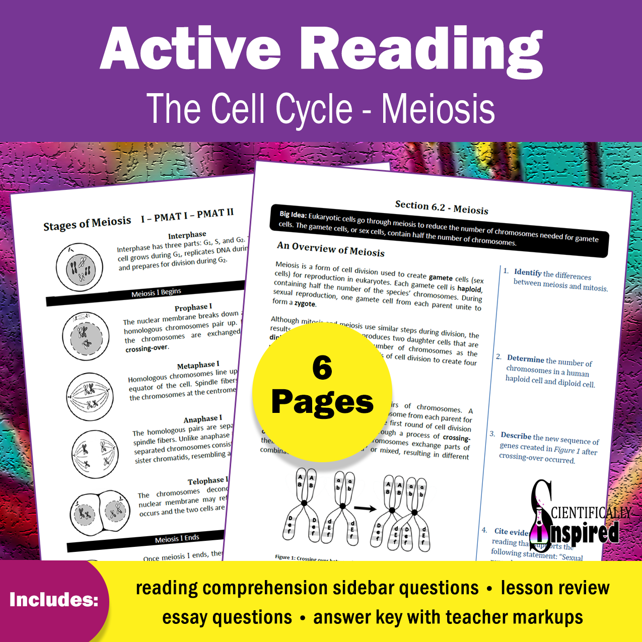 Active Reading Meiosis Printable Textbook Series (Ch6