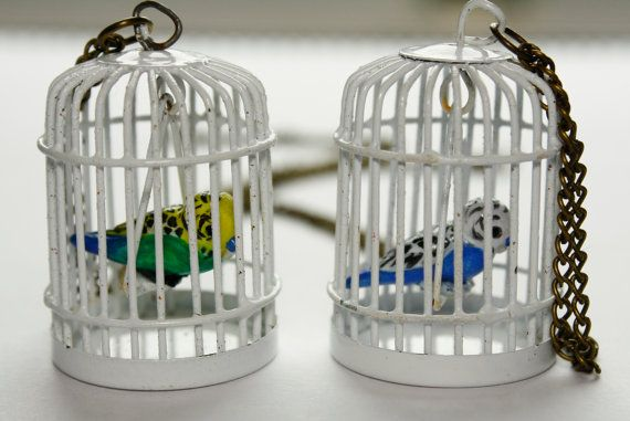 Budgies in a cage necklace.