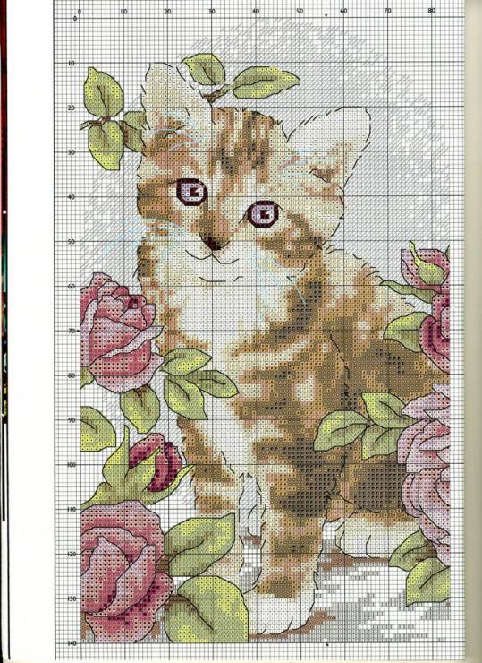 Схема котенка с цветами картинки