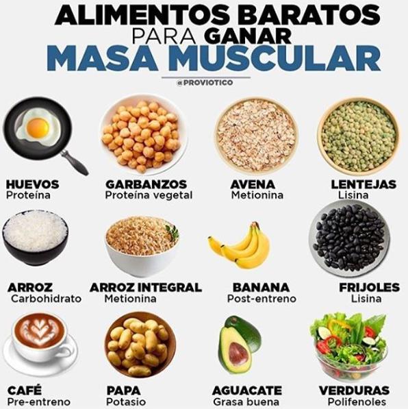 alimentos para generar masa muscular