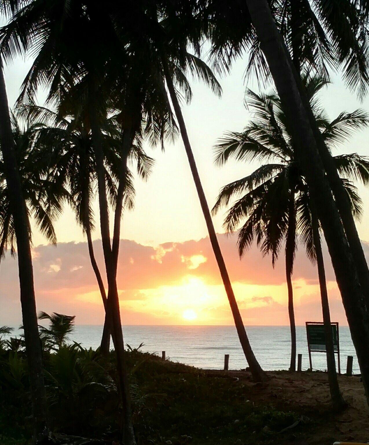 Nascer do Sol na Bahia! #bahia #brazil