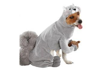 Squirrel pet costume Target.com  sc 1 st  Pinterest & Squirrel pet costume Target.com | Rusty | Pinterest | Pet costumes ...
