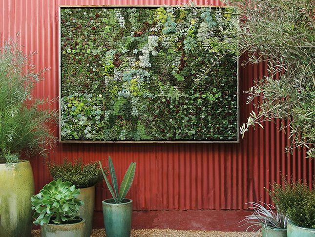 High Quality This Gorgeous Outdoor Living Wall Uses Panels To Hold Plants And Soil In  Place. Vertical Succulent GardensSucculent ...