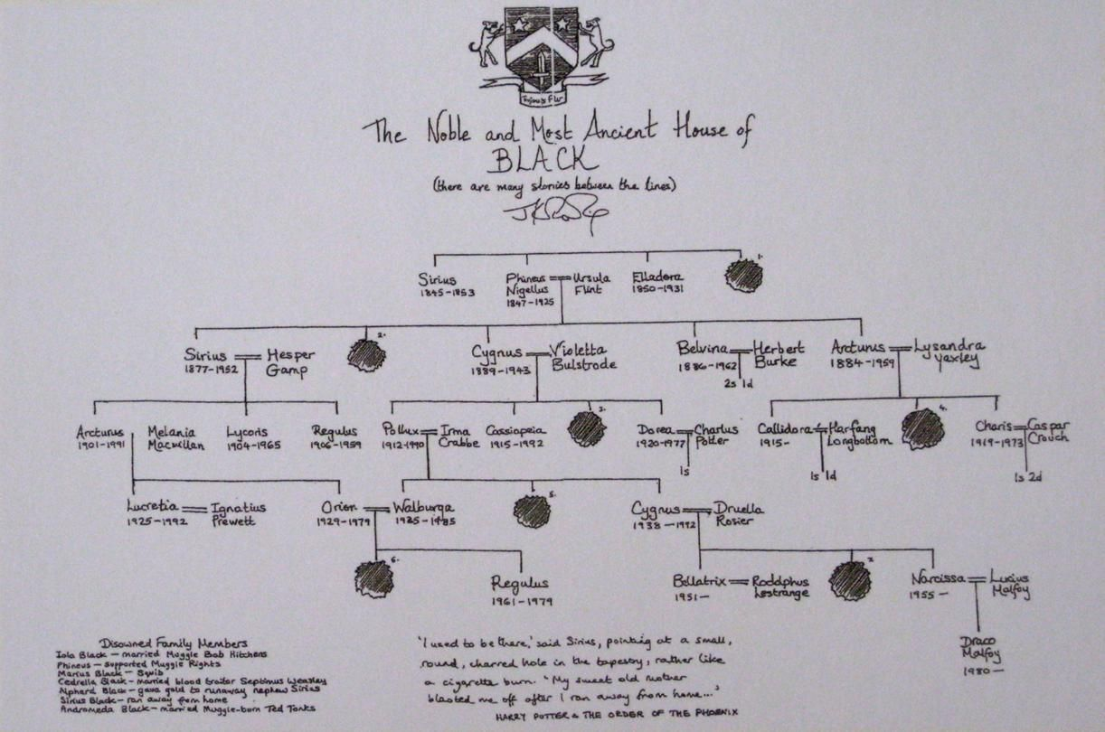The World Of Harry Potter Is Rich With Genealogical Complexities Learn About The Surprising Connections Harry Potter Family Tree Book Lovers Harry Potter Wiki