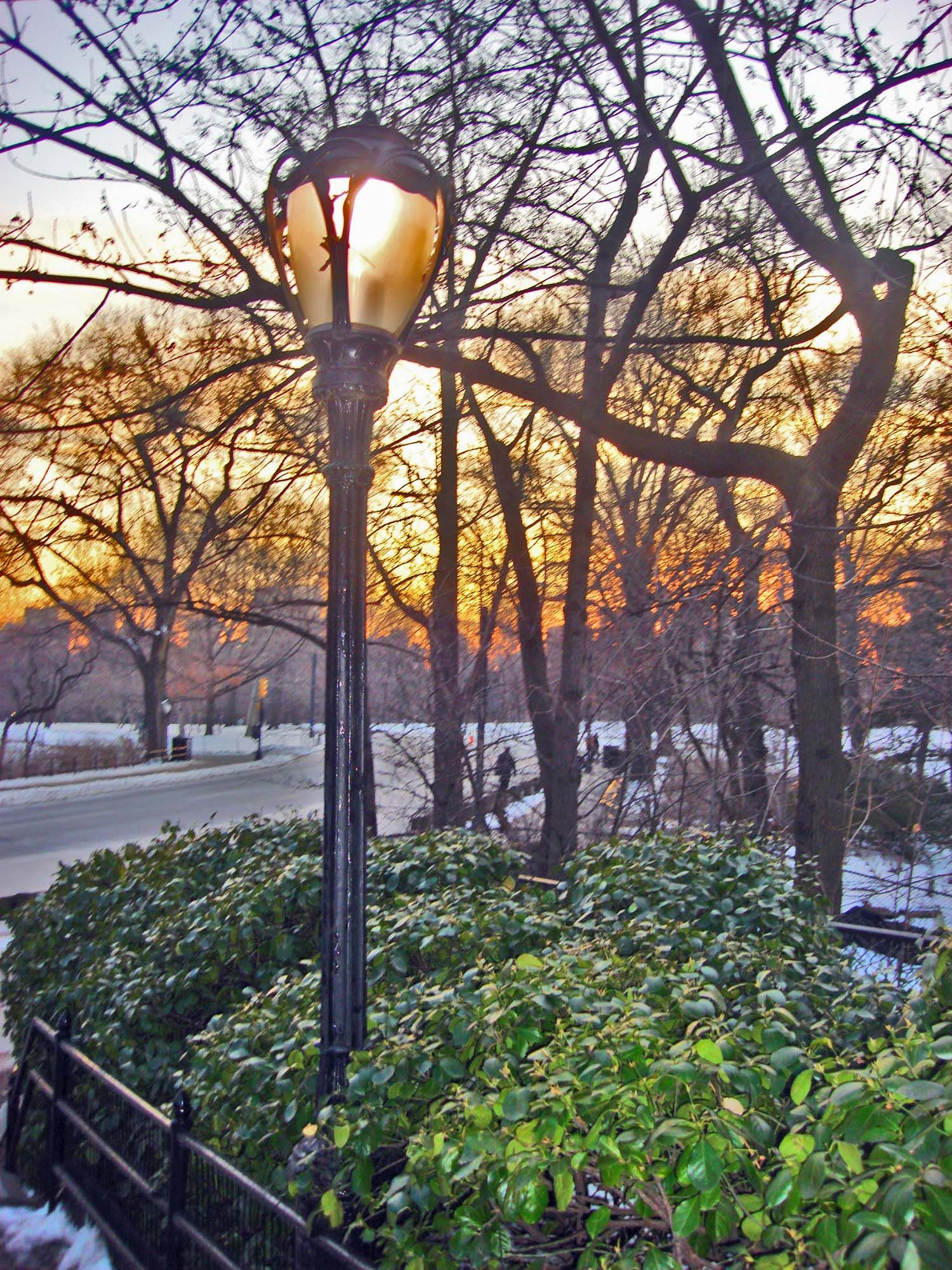 Image result for lamp in central park spring