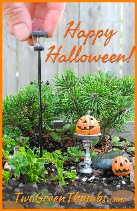 Gnome In Garden: Miniature Halloween Gardening With Plow & Hearth