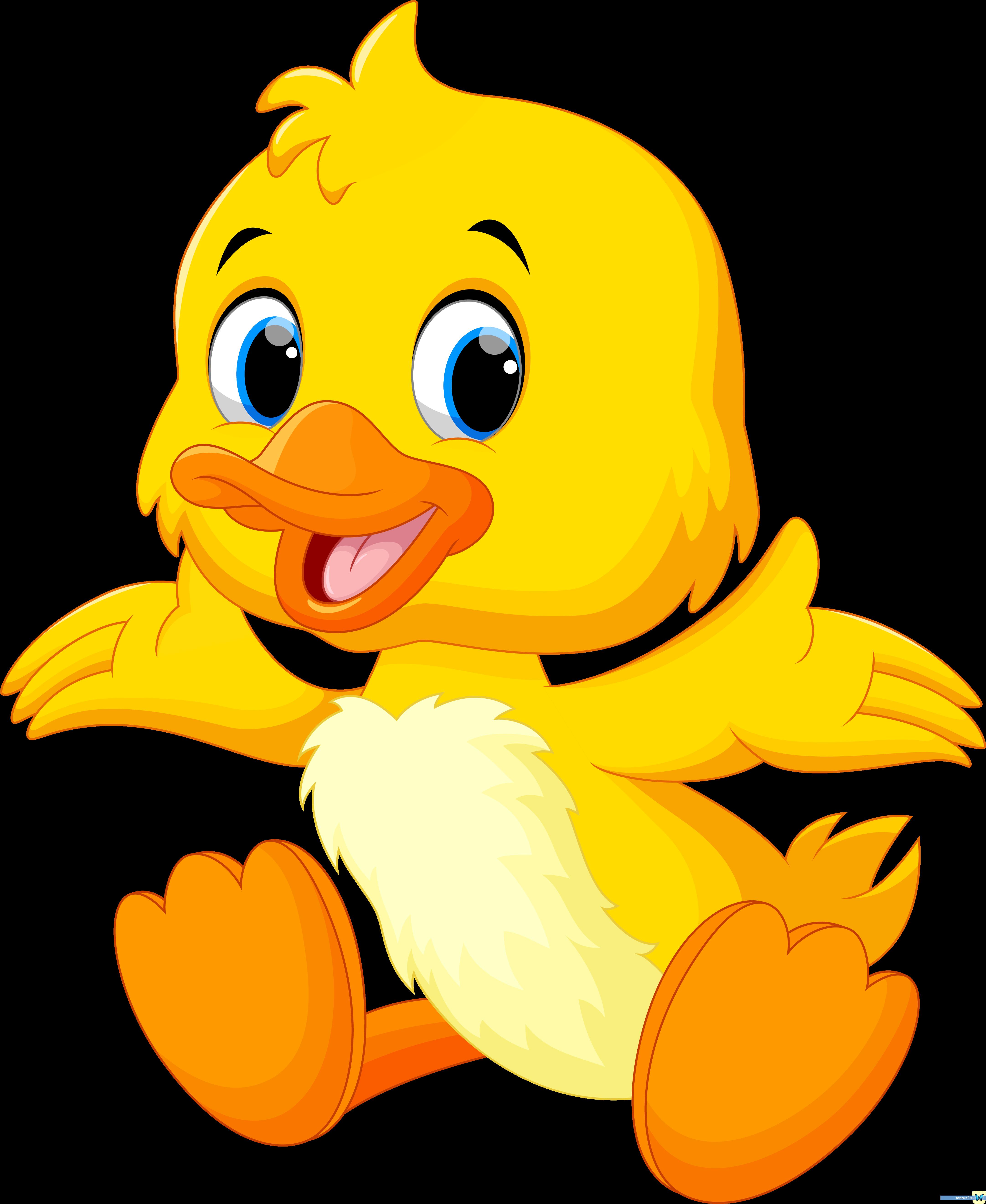 Pin By Borbala Gyorikne Hule On Anka Cute Ducklings Baby Cartoon Duck Cartoon