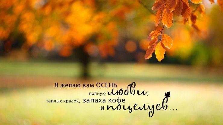 Цитаты про осень | Боке, Осень, Картинки