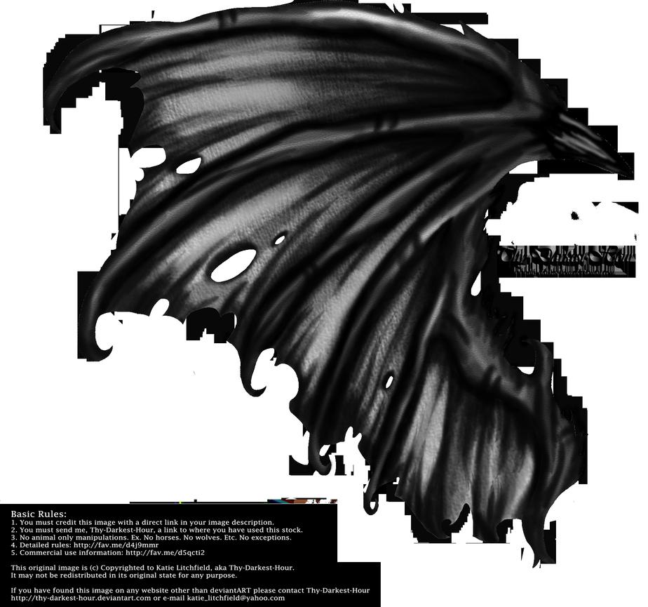 Hellraiser Wings By Thy Darkest Hour Wings Tattoo Wings Drawing Wings Art
