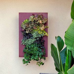 Bright Green · Living Wall PlanterHanging ...