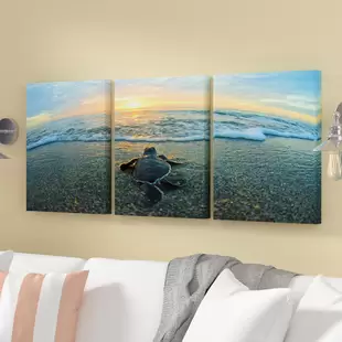 3 Piece Wall Art You Ll Love In 2019 Wayfair