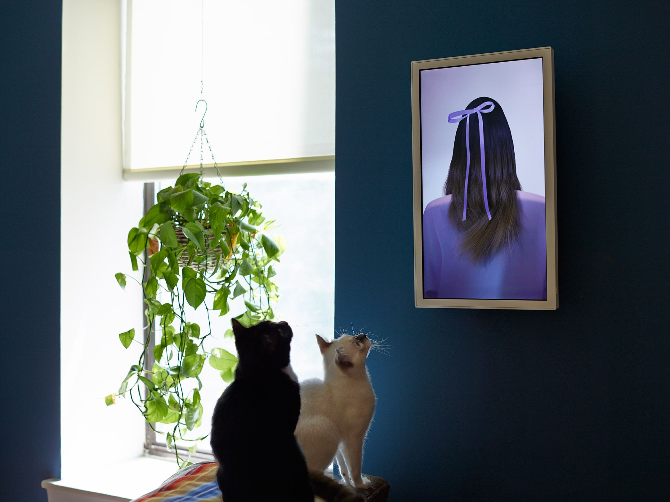 this is a high quality digital wall frame that can show pictures this is a high - Moving Picture Frame