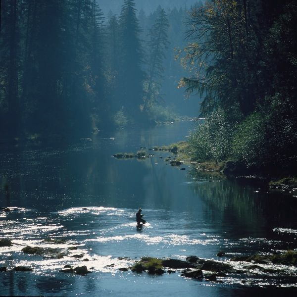 North umpqua river dynamite hole a site sometimes so for Trout fishing at night