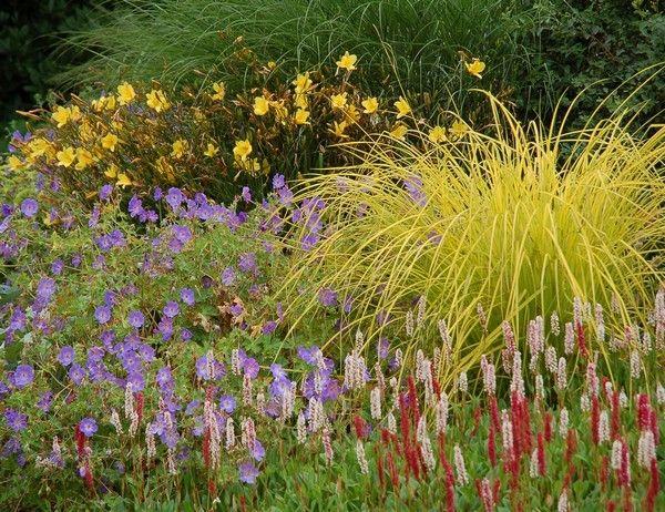 The Beth Chatto Gardens - Water Garden