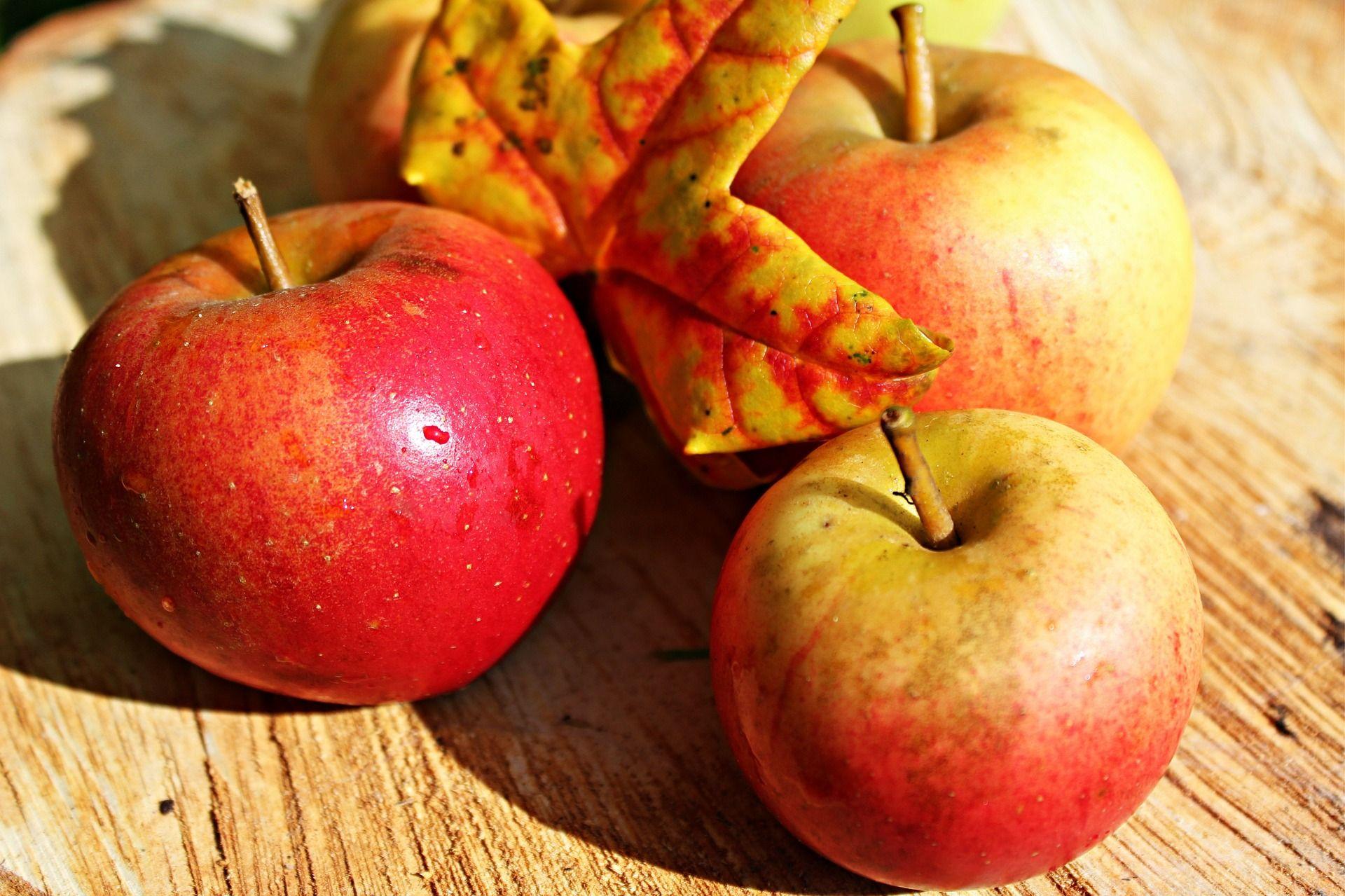 apple quinoa bake  apple fruit apple health benefits