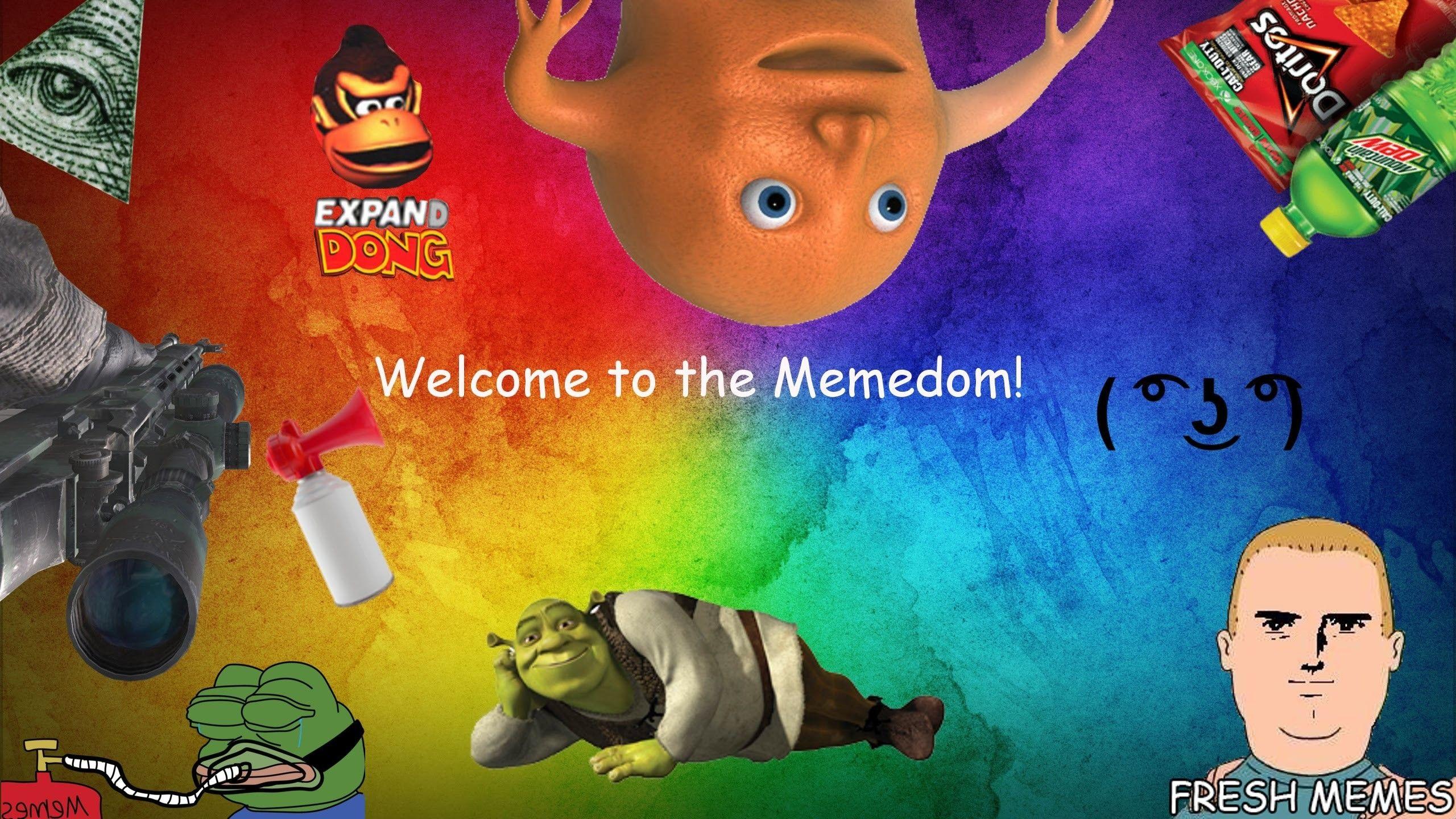 73 Dank Meme Wallpapers On Wallpaperplay Memes Fresh Memes Meme Background