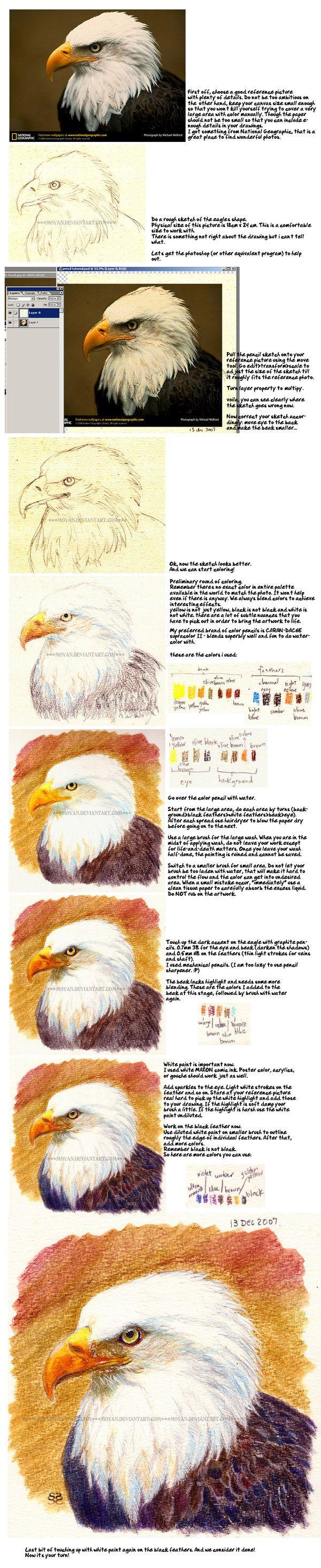 Soluble color pencil tutorial by moyan