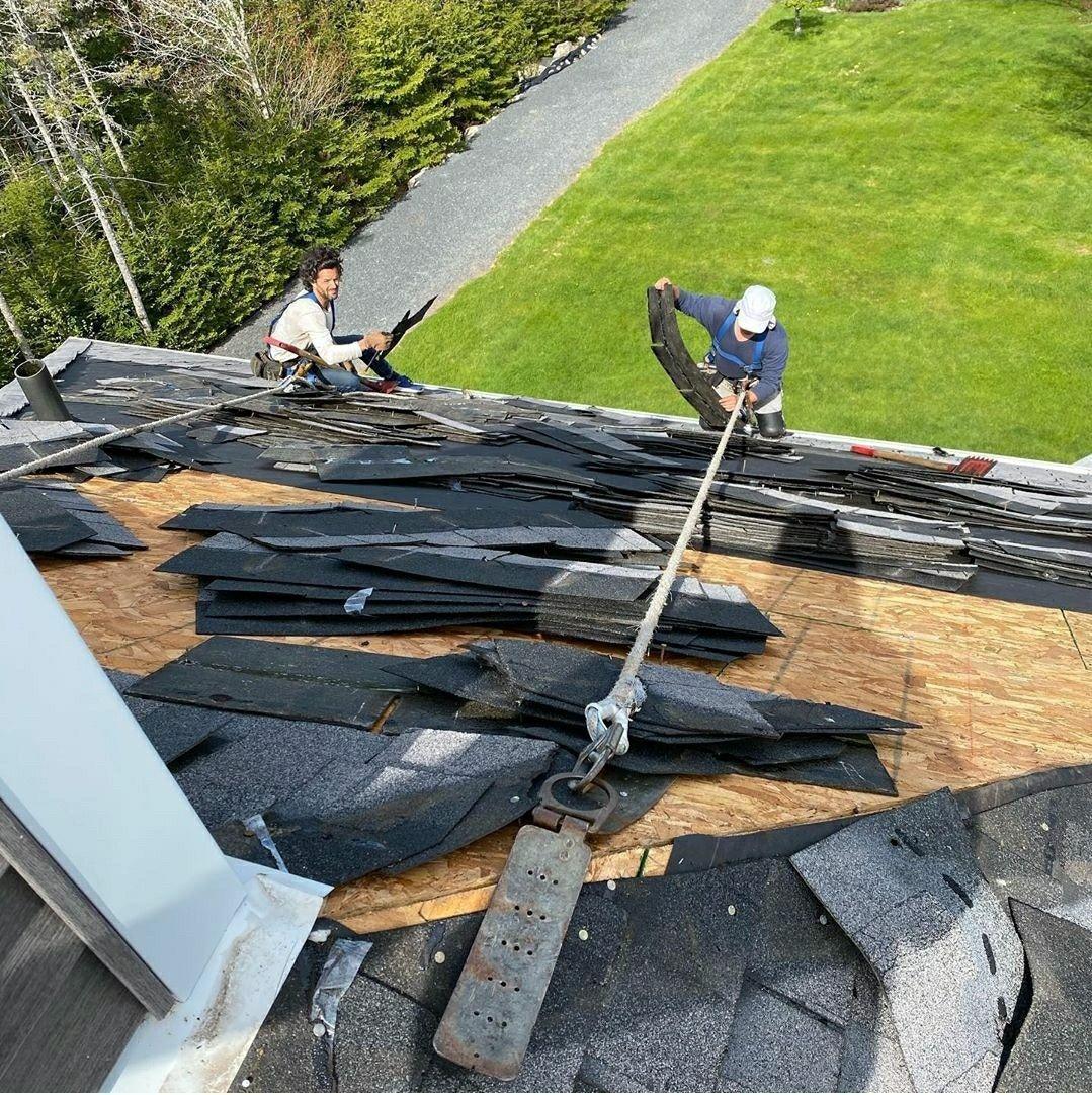 Best Natural Roof Repairing Ever In 2020 Roof Repair Roof Restoration Roof Leak Repair