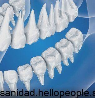 Tus dientes realmente deberían durar toda una vida por lo que es vital que cuides de  Tus dientes realmente deberían durar toda una vida por lo que es vital...