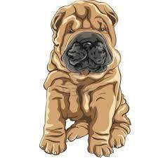 Como Dibujar Un Perrito Buscar Con Google Dibujos De Perros