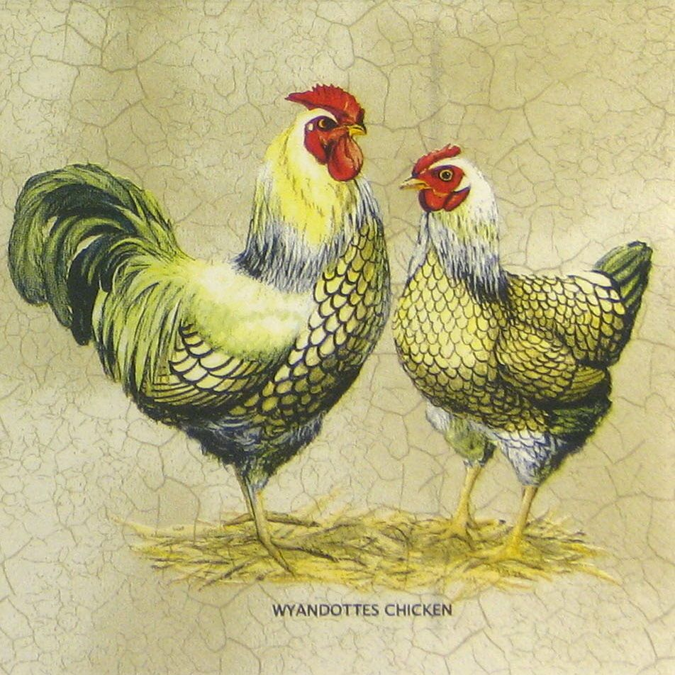 4x Paper Napkins for Decoupage Decopatch French Rooster