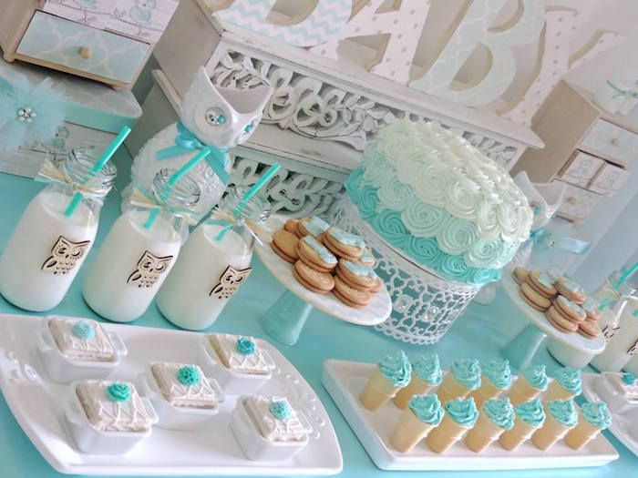 Turquoise Owl Welcome Home Baby Party
