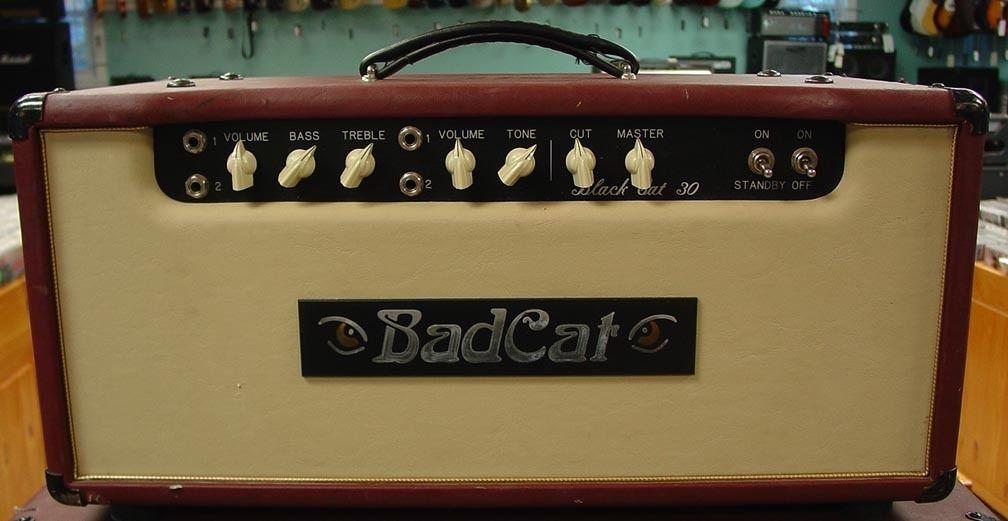 Bad Cat Cougar 5 Wiring Diagram - Wiring Data