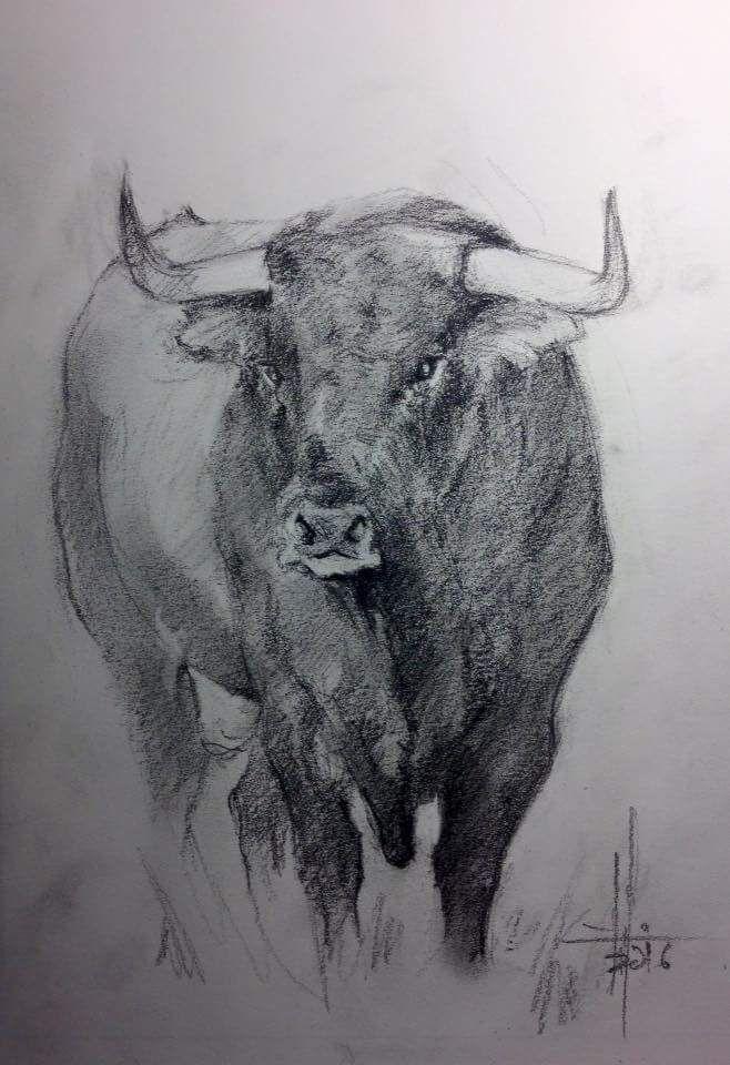 картинки карандашом бык
