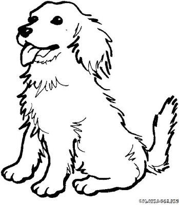 Clip Art Line Drawing Kindergarten Worksheet Guide Dog